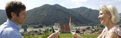 Donauwirt Slide Weißenkirchen