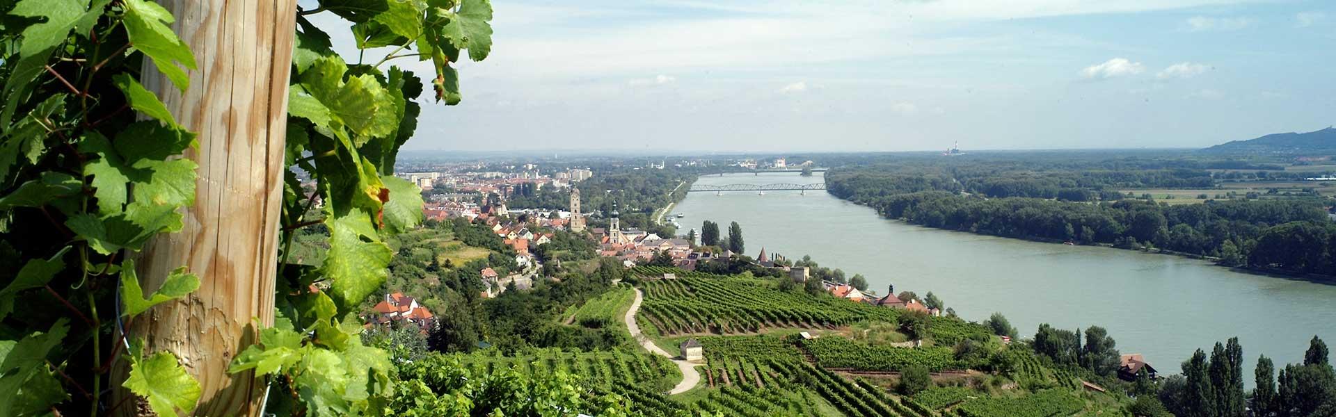 Donauwirt Slide Donau
